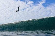 nicaragua-surf-waves-58