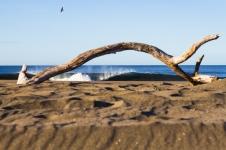 nicaragua-surf-waves-75