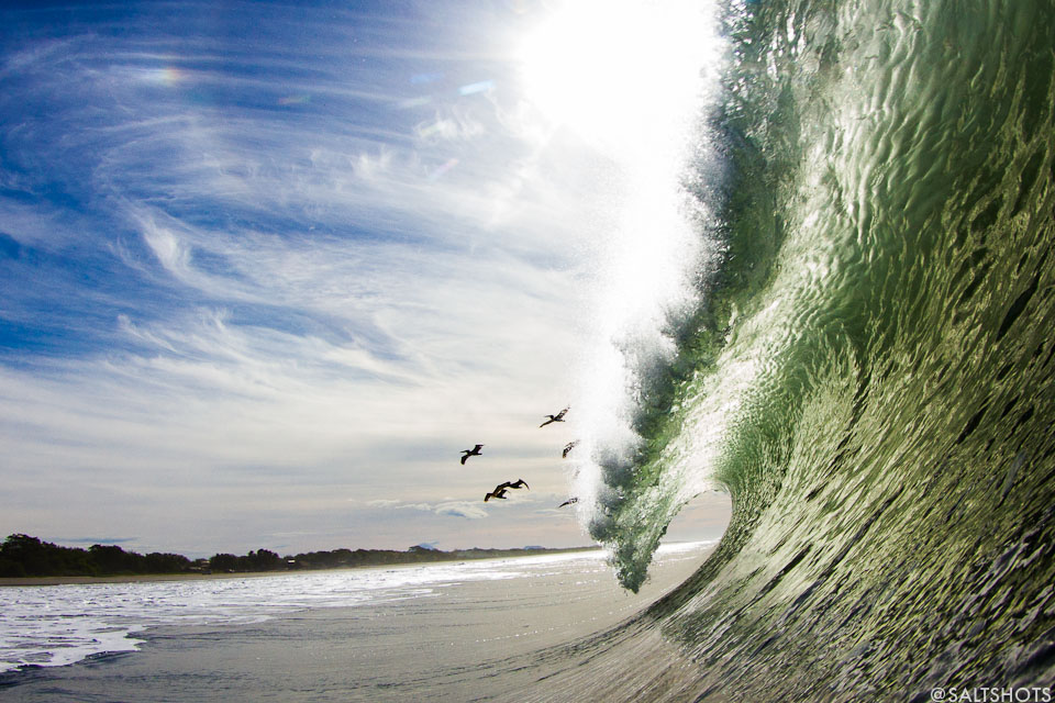 pelicans and barrels nicaragua surf photograhy